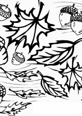 Черно белые картинки на тему осень для детей (13)