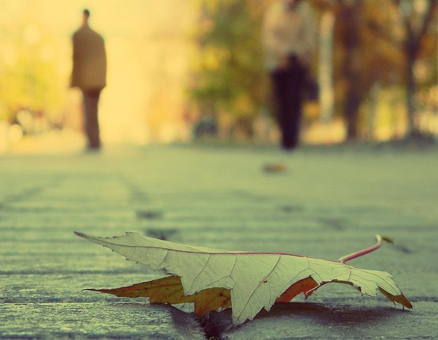 день осеннего одиночества 020
