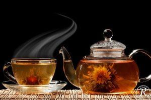 день чайных драконов 015