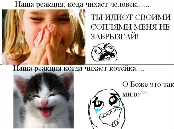 смешные картинки для лд 010