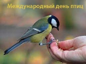 1 апреля Международный день птиц 004