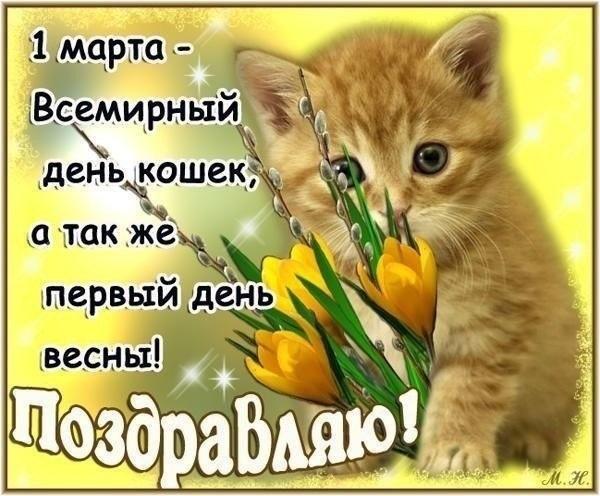 1 марта Всемирный день кошек 005