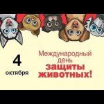 Всемирный день защиты животных (20 картинок)