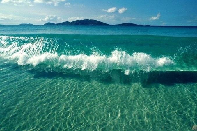 Всемирный день моря 009