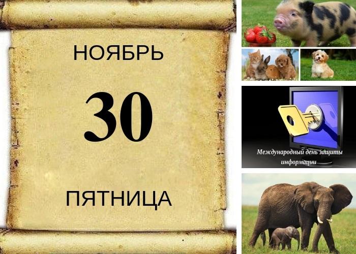 Григорий Зимоуказатель 005