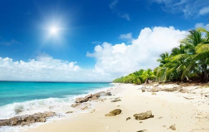 День Конституции (Доминиканская Республика) 011