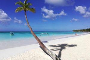 День Конституции (Доминиканская Республика) 017