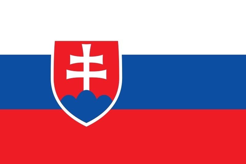 День борьбы за свободу и демократию (Чехия, Словакия) 021