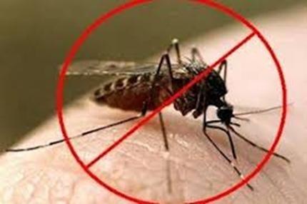 День борьбы с малярией (Америка) 018