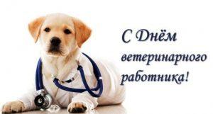 День ветеринарного работника России 023