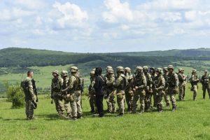 День вооружённых сил в Румынии 024