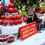 Классные открытки День граната в Азербайджане
