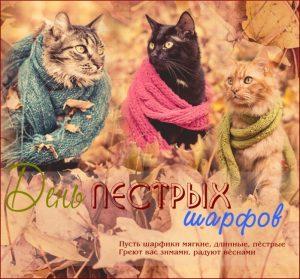 День длинных пестрых шарфов 012