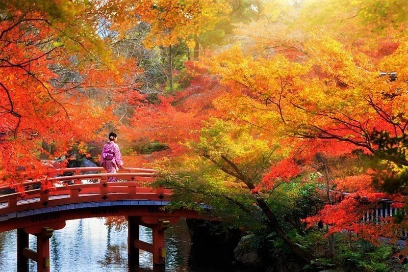 День отдыха (Япония) 005