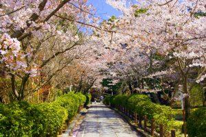День отдыха (Япония) 017
