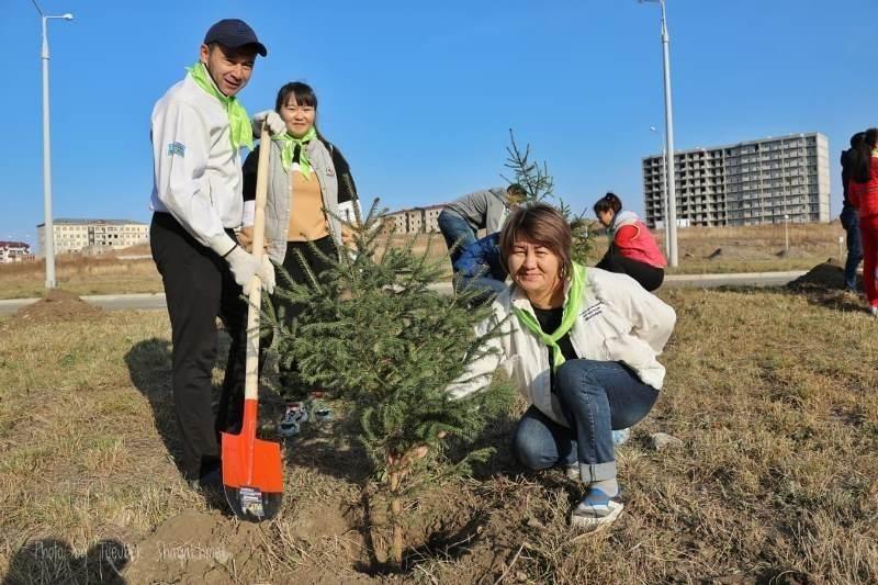 День посадки деревьев в Алжире 006