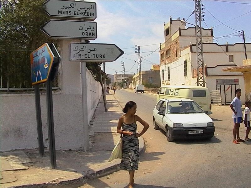 День посадки деревьев в Алжире 012