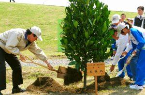 День посадки деревьев 017