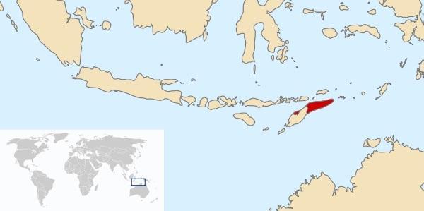 День провозглашения независимости (Восточный Тимор) 018