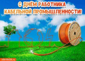 День работника кабельной промышленности 024