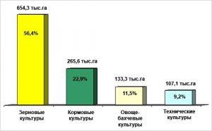День работников сельского хозяйства, пищевой и перерабатывающей промышленности (Кыргызстан) 022