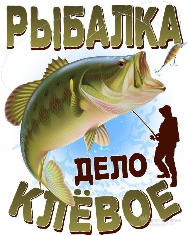 день рыбака смешные картинки