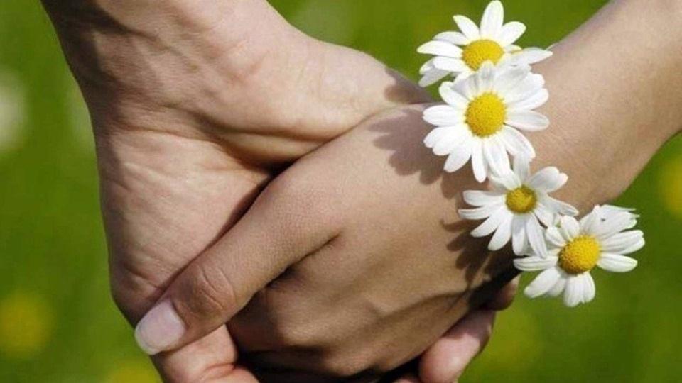День семьи, любви и верности (Россия) 008