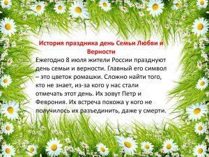 День семьи, любви и верности (Россия) 022