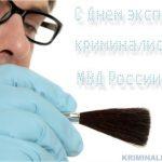 День эксперта-криминалиста МВД России — открытки для друзей