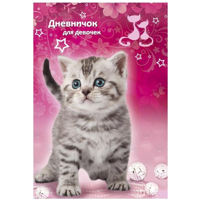 Картинка мой котик любимый 020