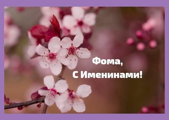 Картинки и открытки на именины Фомы 022