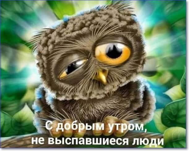 Картинки с добрым утром прикольный004