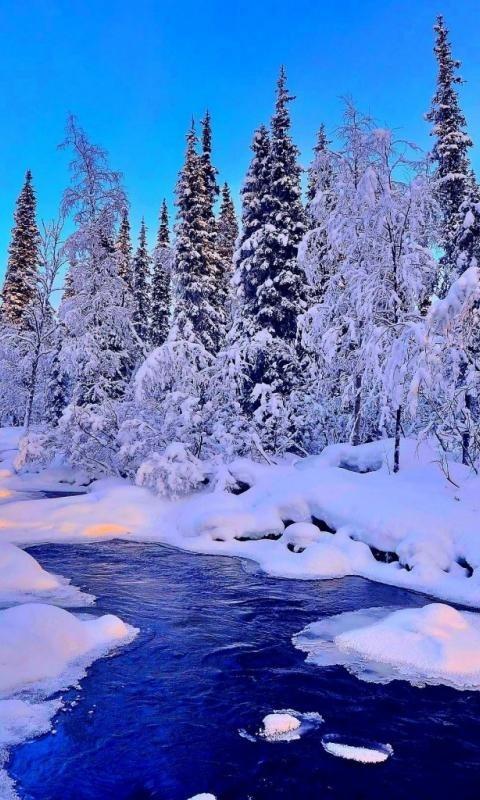 Красивые заставки на телефон зима скачать бесплатно002
