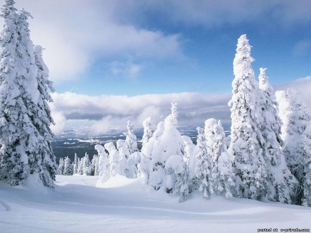 Красивые заставки на телефон зима скачать бесплатно004
