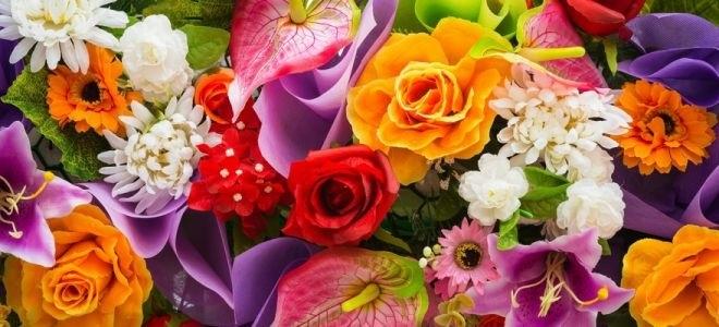Международный день Цветка 013