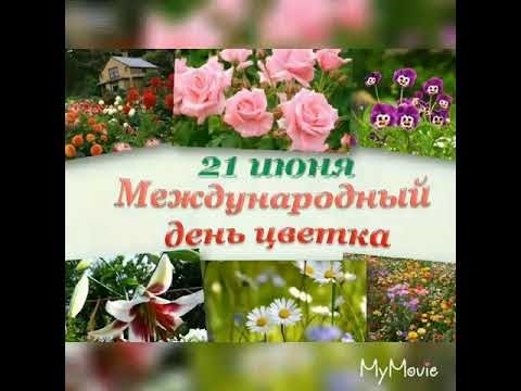 Международный день Цветка 017