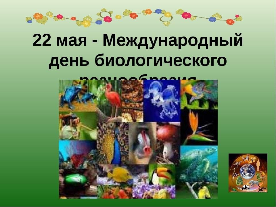 Международный день биологического разнообразия 002