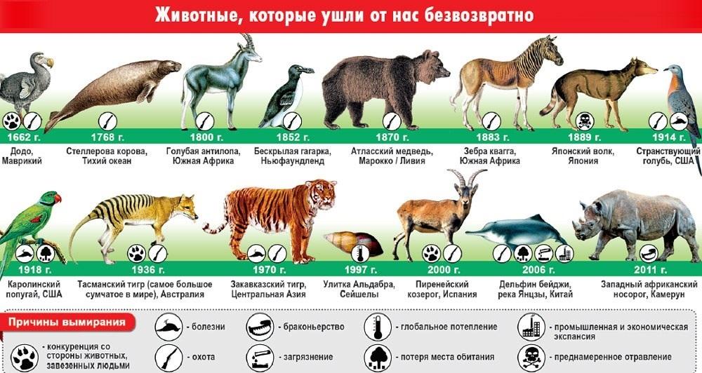 Международный день биологического разнообразия 003