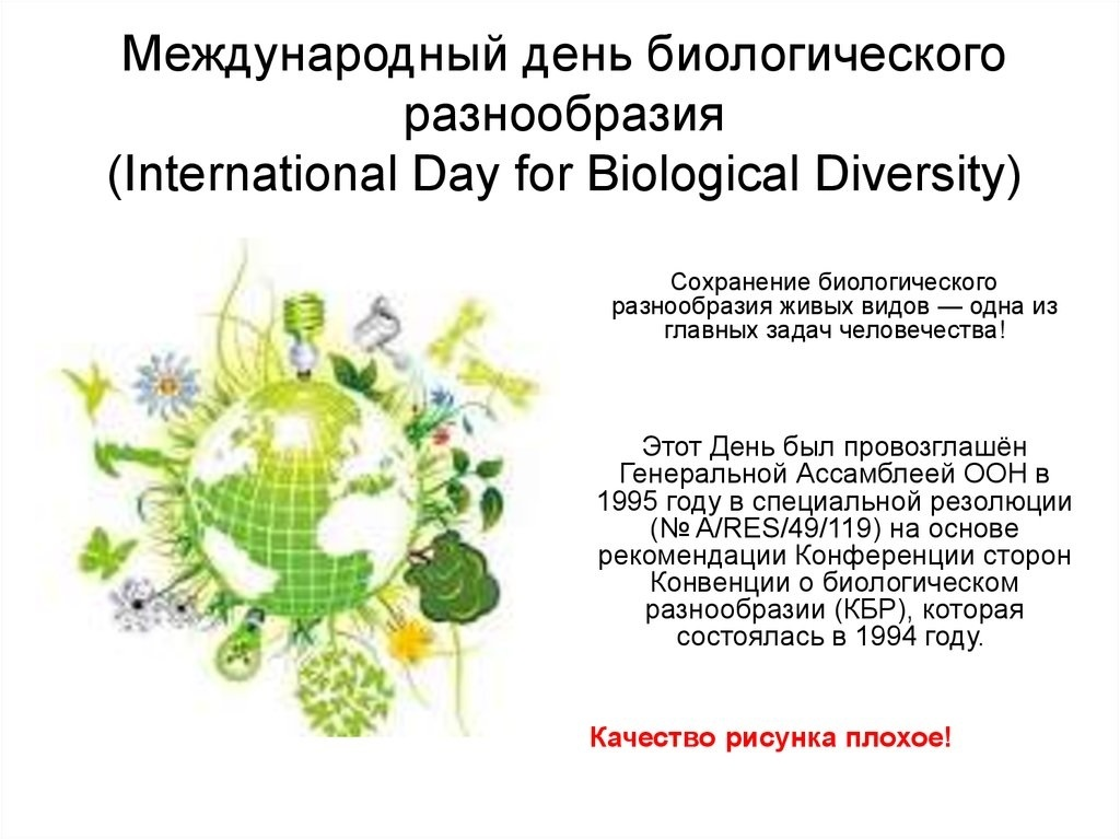 Международный день биологического разнообразия 005