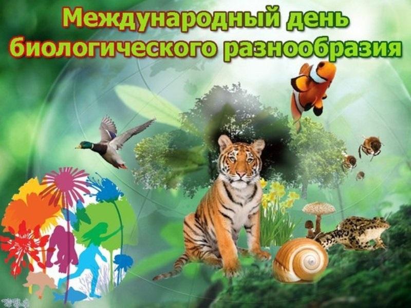 Международный день биологического разнообразия 006