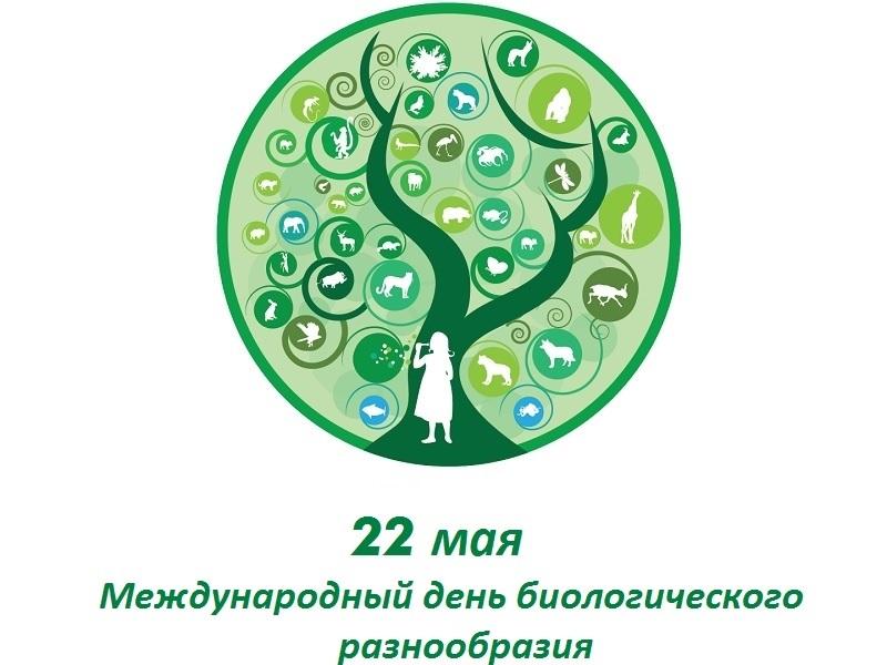 Международный день биологического разнообразия 008