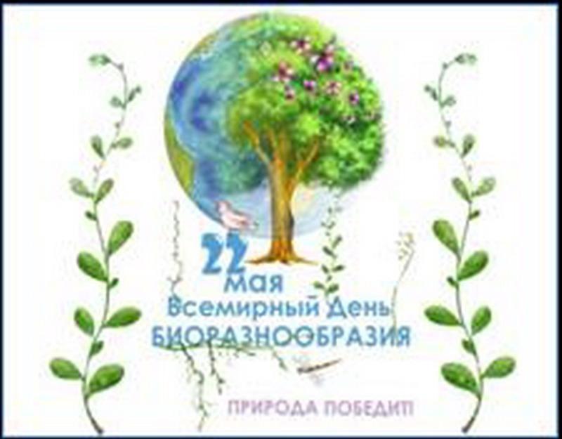 Международный день биологического разнообразия 012