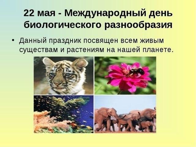 Международный день биологического разнообразия 015