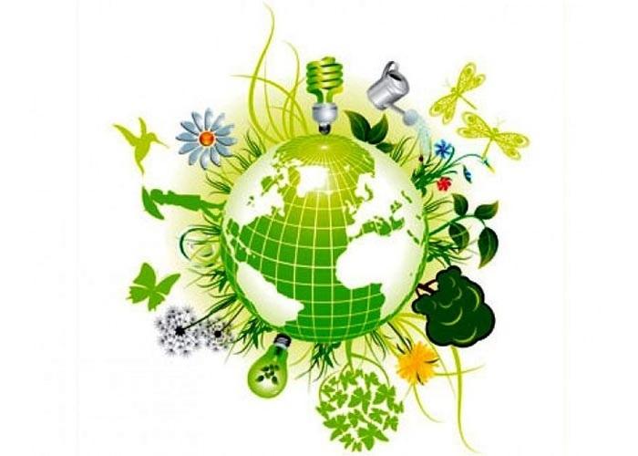 Международный день биологического разнообразия 016