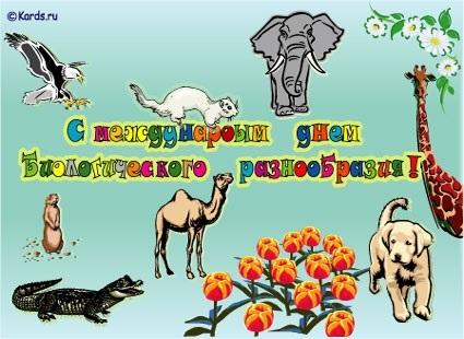 Международный день биологического разнообразия 017