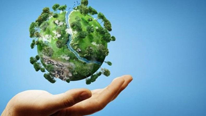 Международный день предотвращения эксплуатации окружающей среды во время войны и вооружённых конфликтов 014