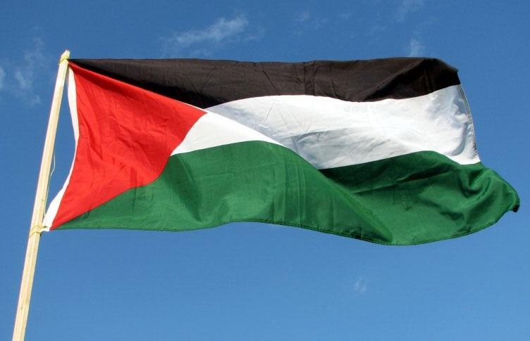 Международный день солидарности с палестинским народом 010