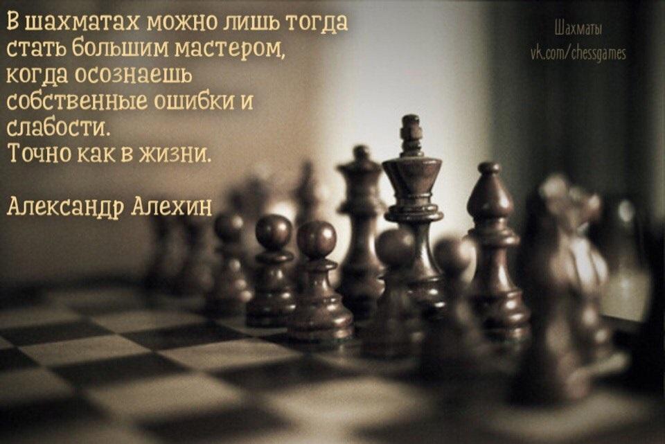 Международный день шахмат 003