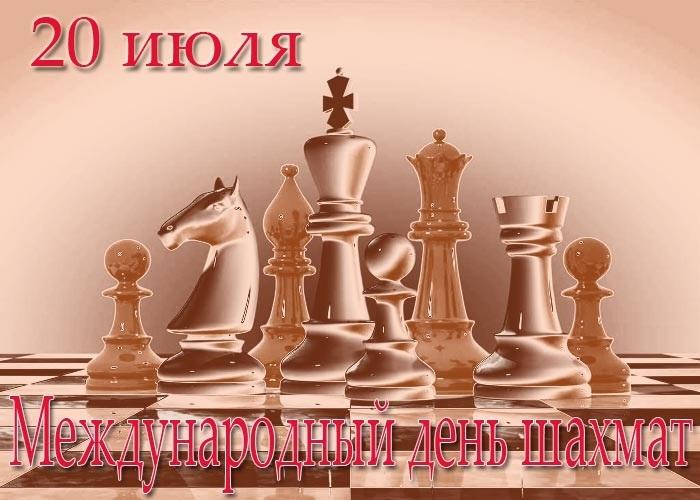 Международный день шахмат 007