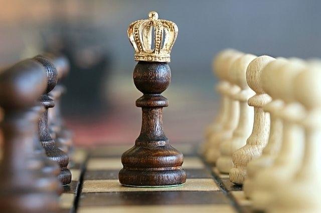 Международный день шахмат 016